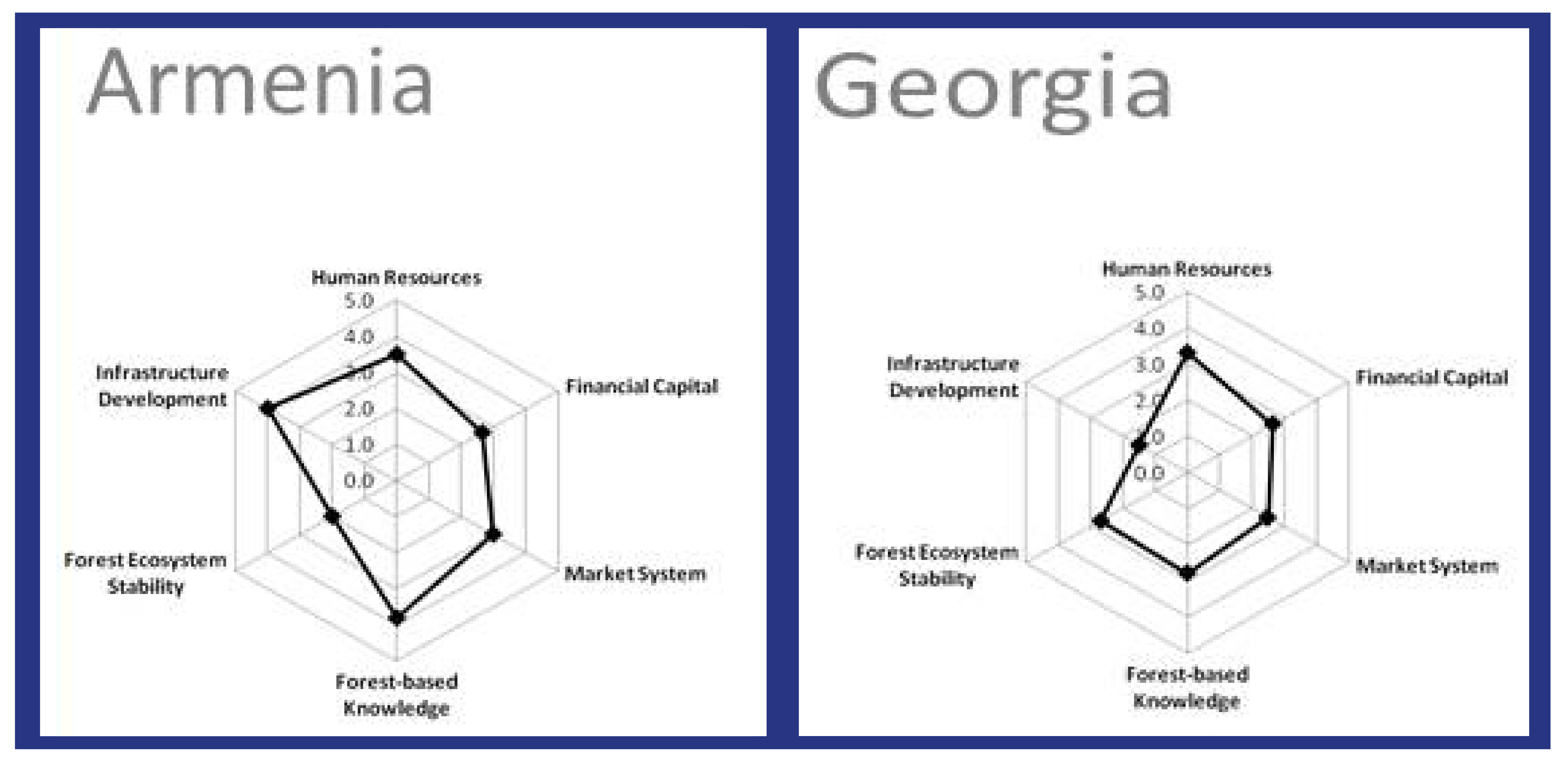in the sample diagrams from communities in armenia and georgia, the shapes  highlight the differences in infrastructure, forest-based knowledge and  forest